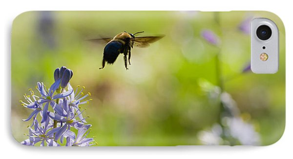 Buzz Off IPhone Case by Annette Hugen