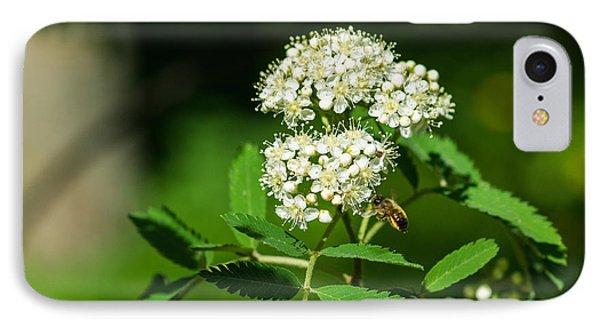Buzzing Bee Phone Case by Alexander Senin