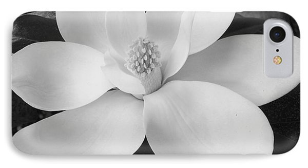 B W Magnolia Blossom IPhone Case by D Hackett
