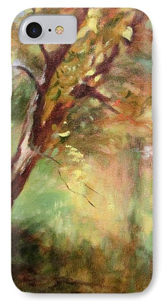 By The Greenway In Autumn- Along The Roanoke River IPhone Case