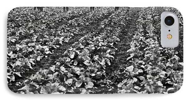 IPhone 7 Case featuring the photograph Cabbage Farming by Ricky L Jones