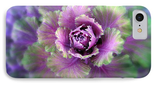 Cabbage iPhone 7 Case - Cabbage Flower by Jessica Jenney