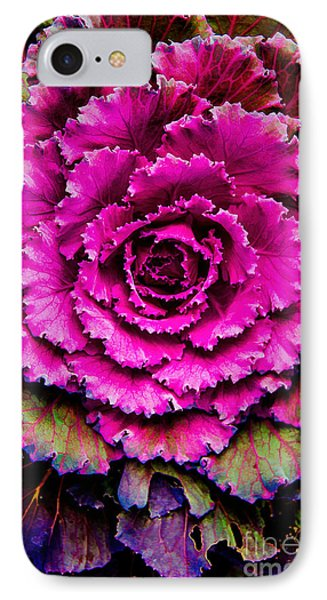 Cabbage Phone Case by Jon Burch Photography