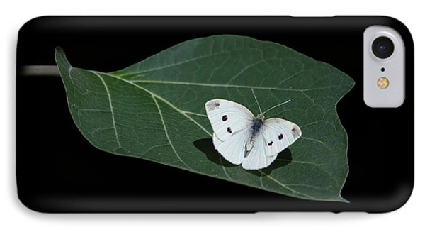 Cabbage White Butterfly IPhone Case