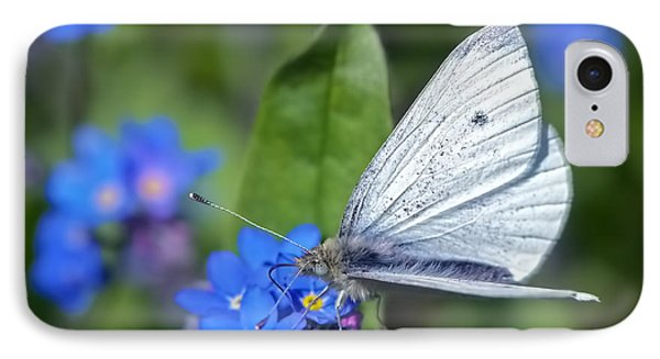 Cabbage White Butterfly On Forget-me-not IPhone Case by Sharon Talson