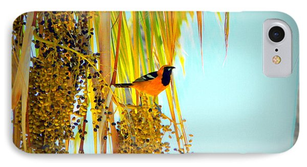 Cabo Oriole IPhone Case by Gerhardt Isringhaus