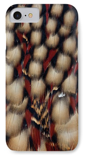 Cabot's Tragopan IPhone Case by Darrell Gulin