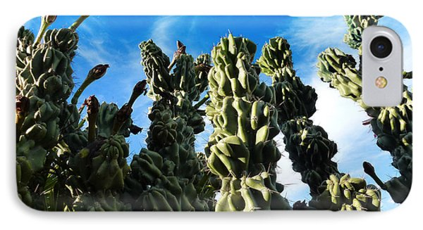 IPhone Case featuring the photograph Cactus 1 by Mariusz Kula