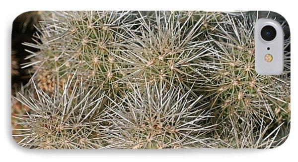 Cactus 14 IPhone Case