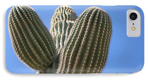 Cactus 16 IPhone Case