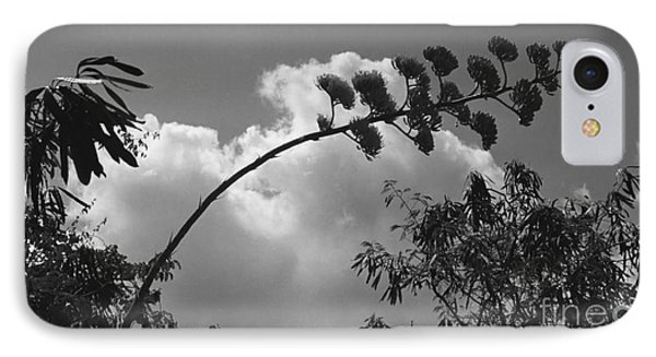 IPhone Case featuring the photograph Cactus And Cloud by Kenny Glotfelty