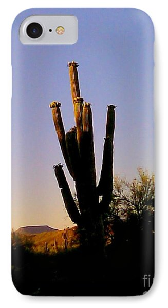 IPhone Case featuring the photograph Cactus At Sundown by Fred Wilson