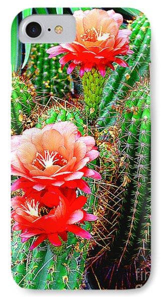 Cactus Blooming Arizona Desert IPhone Case by Merton Allen