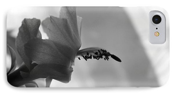 IPhone Case featuring the photograph Cactus Dance by Silke Brubaker
