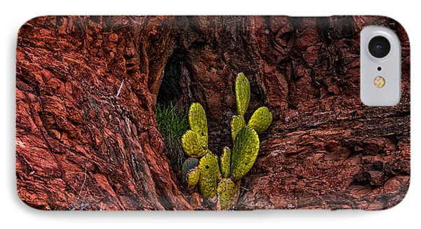 Cactus Dwelling IPhone Case by Mark Myhaver