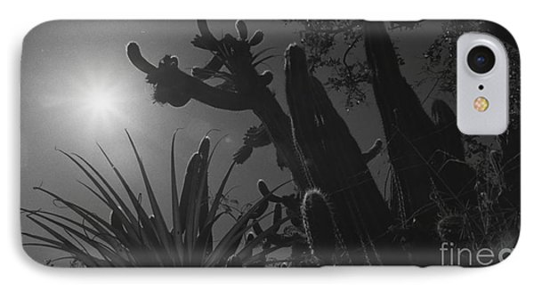 IPhone Case featuring the photograph Cactus Family - 2 by Kenny Glotfelty
