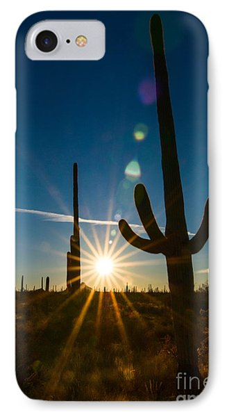 Cactus Flare - Sunrise At Saguaro National Park IPhone Case by Jamie Pham