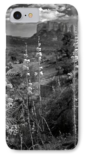 Cactus Flowers And Courthouse Bluff Bw IPhone Case