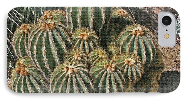 Cactus In The Garden IPhone Case by Tom Janca