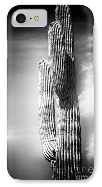 Cactus Spoltlight Phone Case by John Rizzuto