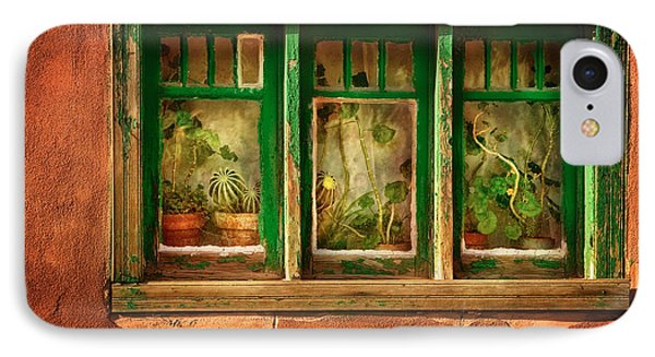 Cactus Window IPhone Case by Keith Berr