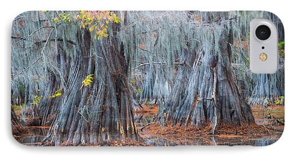 Caddo Lake Fall IPhone Case