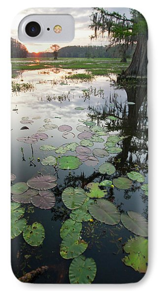 Caddo Lake, Texas's Largest Natural IPhone Case