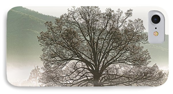 IPhone Case featuring the photograph Cades Cove Tree by Phyllis Peterson