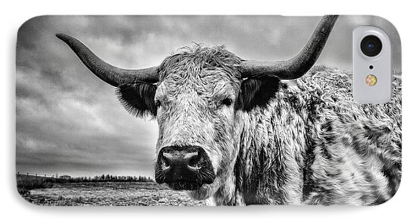 Cadzow White Cow IPhone Case