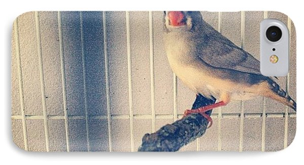 Caged Bird IPhone Case