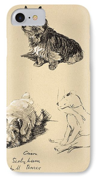 Cairn, Sealyham And Bull Terrier, 1930 IPhone Case