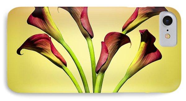Cala Lily 6 IPhone Case by Mark Ashkenazi
