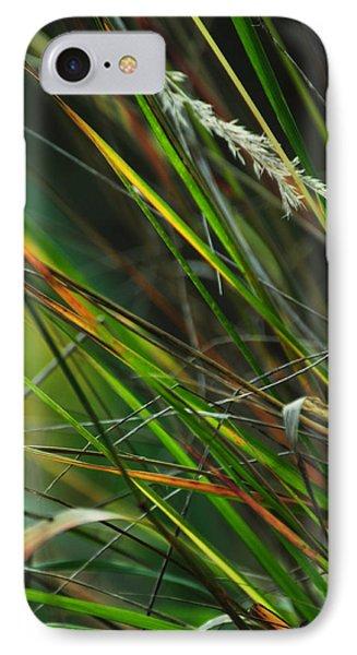Calamagrostis Lines Phone Case by Rebecca Sherman