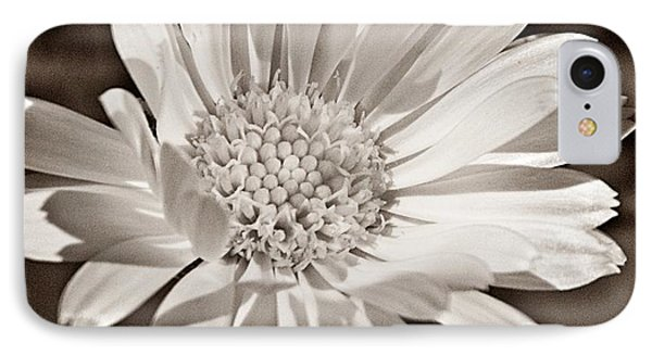 Calendula IPhone Case by Chris Berry