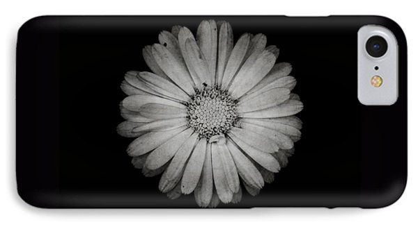 IPhone Case featuring the photograph Calendula Flower - Textured Version by Laura Melis