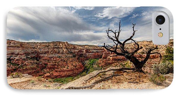 Calf Creek Phone Case by Dustin  LeFevre
