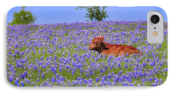 IPhone Case featuring the photograph Calf Nestled In Bluebonnets - Texas Wildflowers Landscape Cow by Jon Holiday