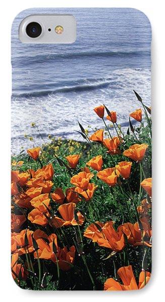 California, Big Sur Coast, California IPhone Case by Christopher Talbot Frank