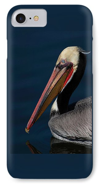 IPhone Case featuring the photograph California Brown Pelican Portrait by Ram Vasudev