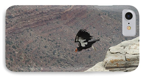 California Condor Taking Flight IPhone Case by Jayne Wilson