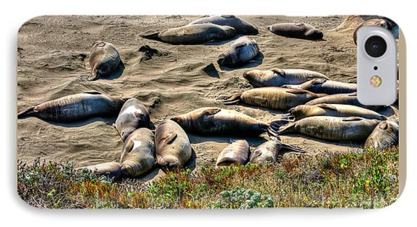 IPhone Case featuring the photograph California Dreaming by Jim Carrell