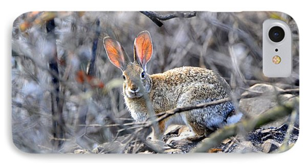 Homeless Hare IPhone Case