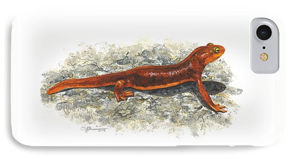 California Newt IPhone Case by Cindy Hitchcock
