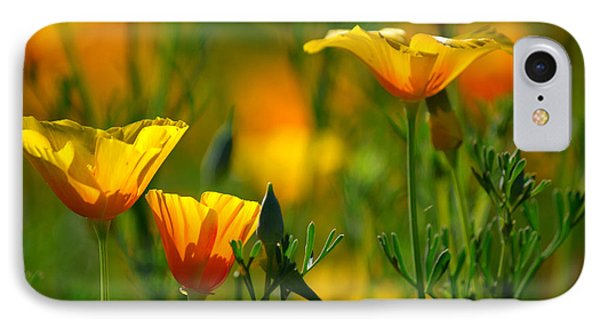 California Poppies IPhone Case by Deb Halloran
