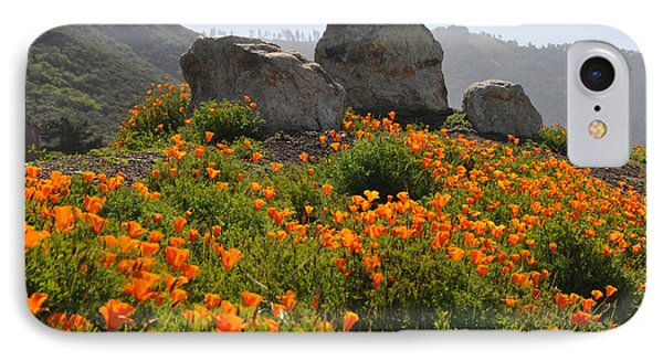 IPhone Case featuring the photograph California Poppies by Lynn Bauer
