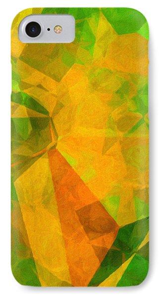 California Poppies IPhone Case by Susan Schroeder
