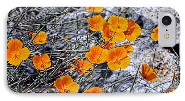 IPhone Case featuring the photograph California Poppies by William Havle