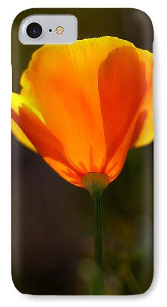 California Poppy 2 Phone Case by Robert Woodward