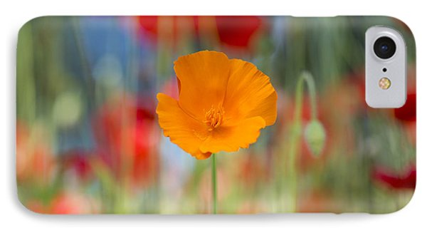 California Poppy IPhone Case by Tim Gainey