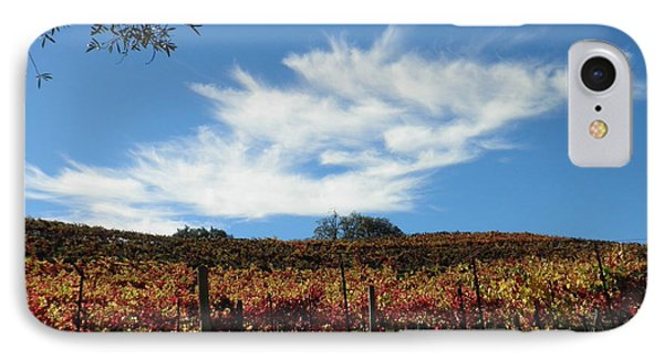 California Vineyard IPhone Case by Suzanne McKay